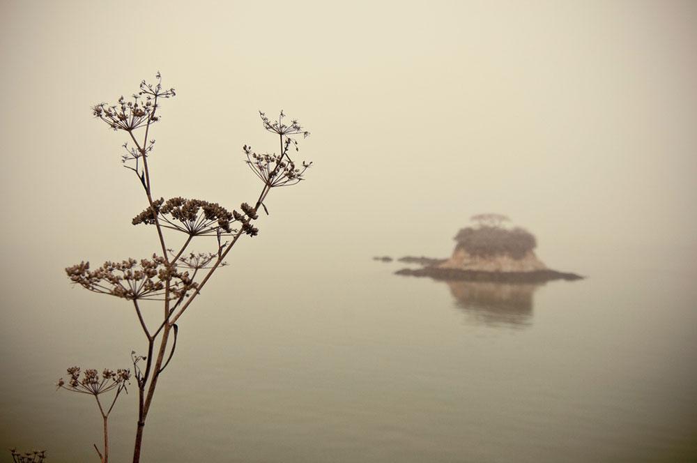 Invisible Island by Elsa Kawaii